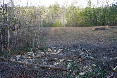 The Nery Handyman crew removed a huge amount of trees to open up the view from the cabin