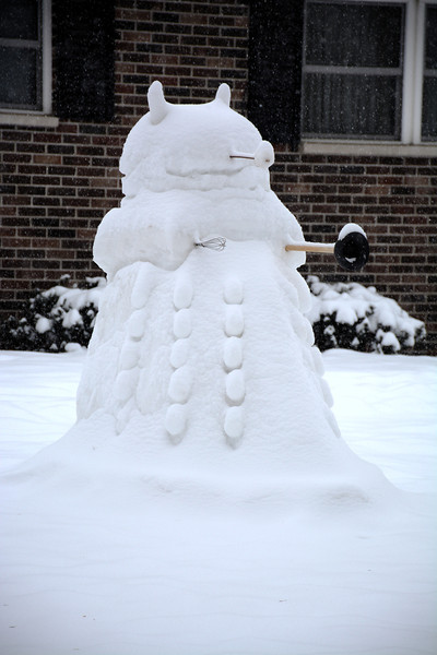 Snow Dalek