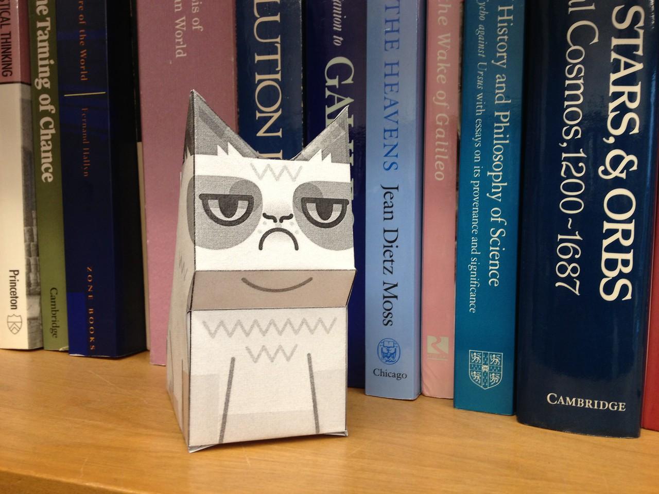 Grumpy cat cutout