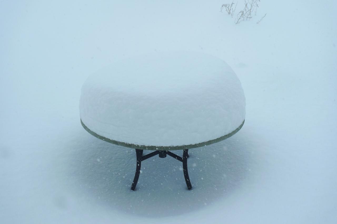 Snowstorm of 12 Jan 2011