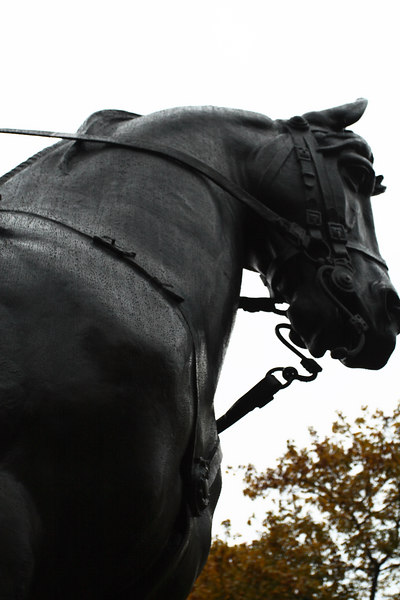 Equestrian Statue of King George IV (Detail)