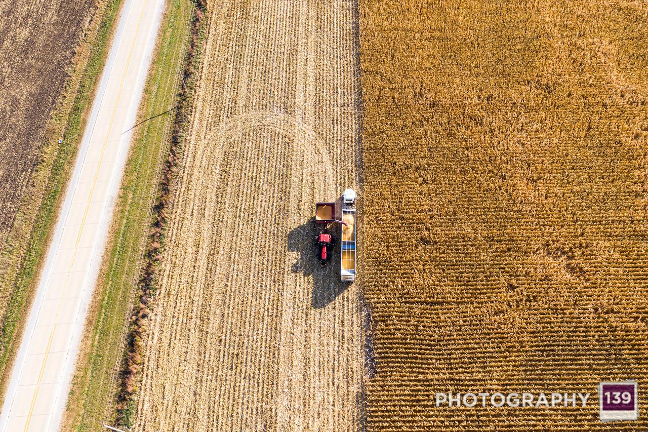 Rodan 139: Harvest Time