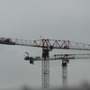 Cranes over South Lake Union, Seattle, WA