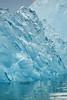 Iceberg, Endicot Arm