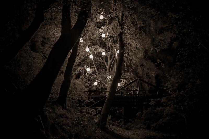 Henrik Plenge Jakobsen (DK) - Angst Tree