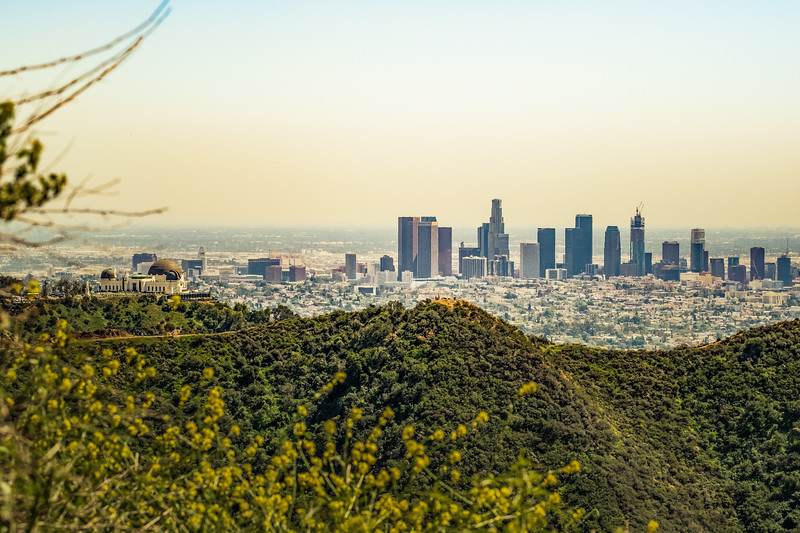 Griffith Observatory & Downtown