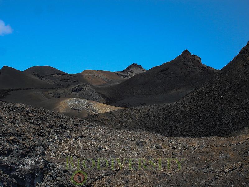 Paul S. Hamilton_RAEI.orgSierraNegra_Landscape7