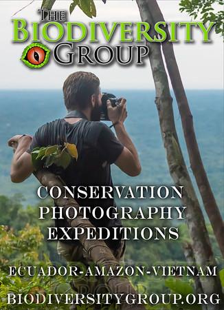 Biodiversity Group, TBG Sierra 2