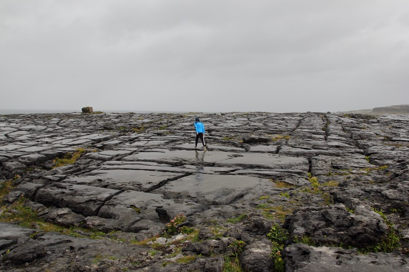 Day 235 - Burren Landscape
