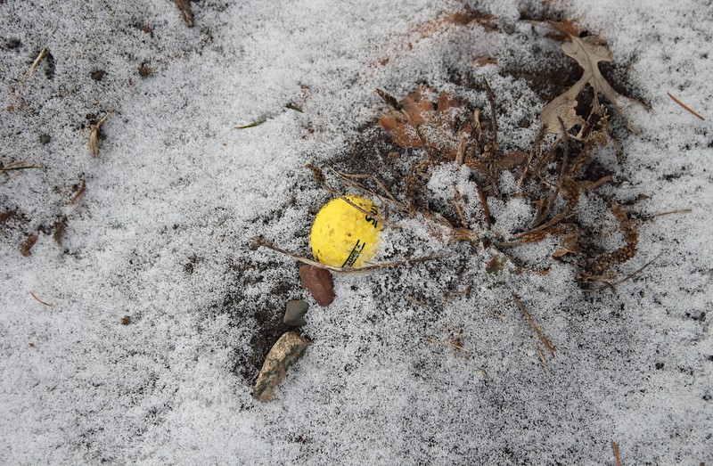 Day 7 - Frozen Range Ball
