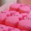 Day 478 - Sugar Sweet