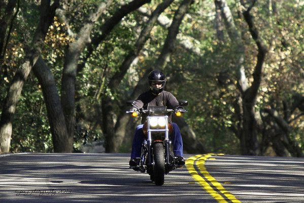 September 2 - A morning ride down Live Oak Canyon Road.