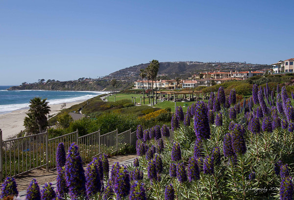 April 16 - Pretty much a perfect day in Laguna Niguel.