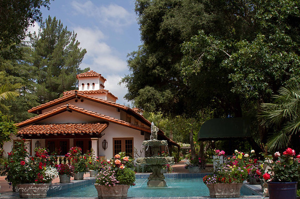May 9 - I spent the morning at Rancho Las Lomas scoping out an outing for the photo club...Anybody interested???