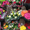 June 28 - I'm going to miss all the amazing flower markets here.