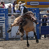 August 25 - I LOVE the rodeo...and the fringe was flying there today!