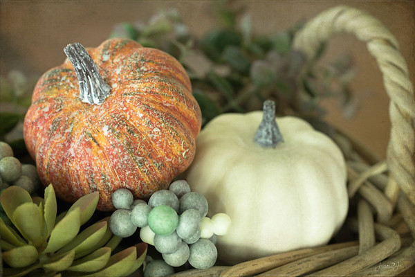 October 1 - Let 'Pumpkin Season' begin!<br /> <br /> #CY365 - Low Light (the arrangement on my dining table shot at ISO 2000/f5.6/@1/10sec)