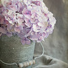"""June 26 - So good to have all my """"stuff"""" at hand once again...<br /> <br /> #CY365 - In a Vase"""