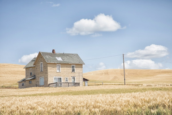 July 19 - A day in The Palouse is a good day.  Craig and I happened upon this old house a few years ago while driving down farm roads. Today we were on a mission to find it again...we were successful!  ##CY365 - Weathered Steptoe, WA