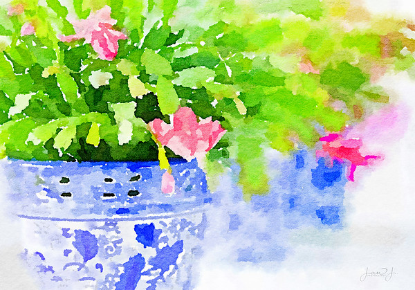 February 1 - I hadn't used Waterlogue in a few years.  This was fun...  #CY365 - Filter Fun