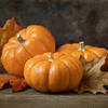 October 27 - Happy Pumpkin Season...<br /> <br /> #CY365 - Odd Numbers
