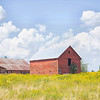 August 14 - I love this old barn just down the road. The wild flowers have bloomed and I've been waiting for a good cloud day...I don't have to wait long here.<br /> <br /> #CY365 - Dated