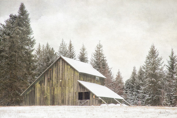 February 11 - Not all barns are red...<br /> <br /> Hayden, ID