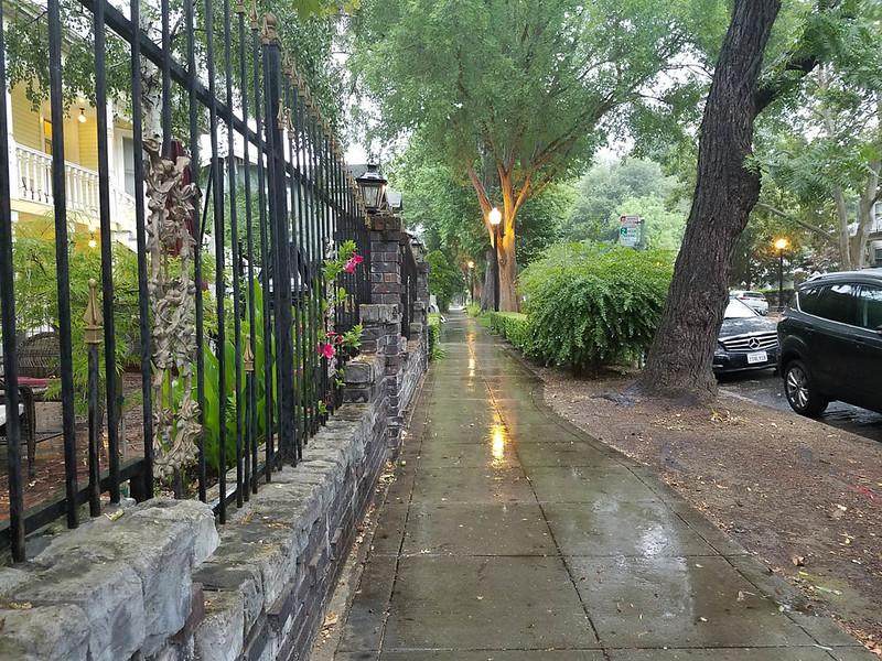 Rainy Thursday Morning
