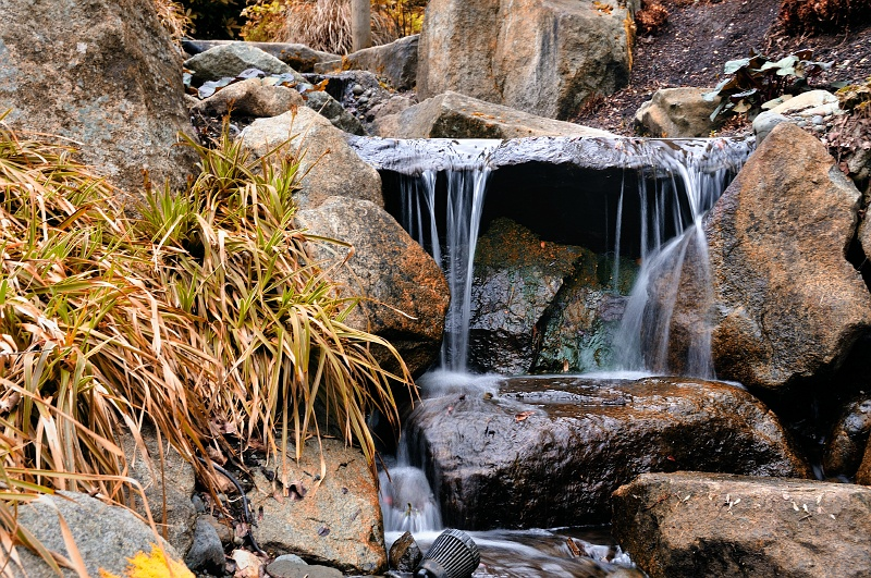 2 Mar 2010: This was taken in the Bellevue Botanical Gardens. I was hoping for more spring color, but no luck. I think I did an okay job handholding at a slow enough exposure to blur the water.