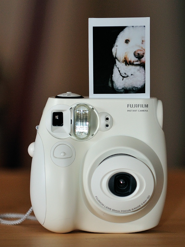 12 Feb 2010: Julie got this cool instant camera. It's the low tech anthesis to all the high tech photography stuff I'm accumulating.