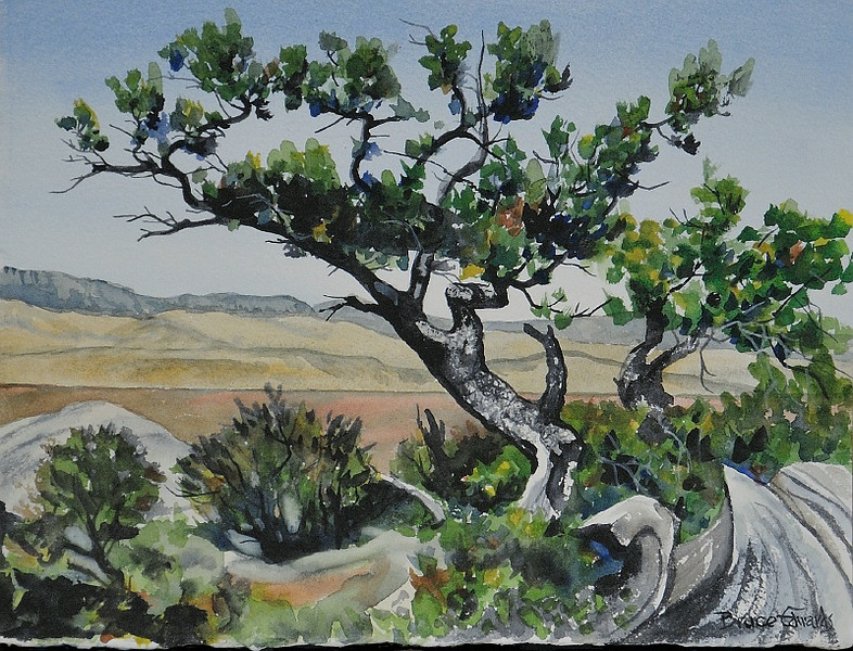 30 Jan 2010: A friend of Julie's, Bruce Edwards, offered to do a drawing of a picture she took, and I took a picture of his drawing. So this is a picture of a drawing of a picture.
