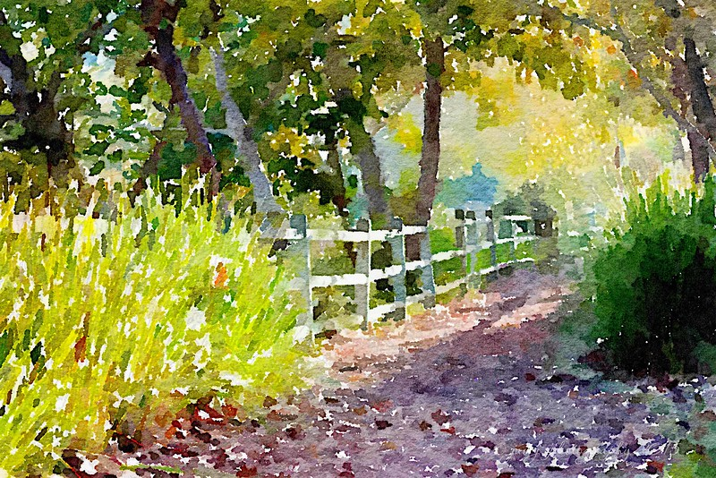 September 23 - Waterlogue  Wednesday...Along the Oso Creek Trail