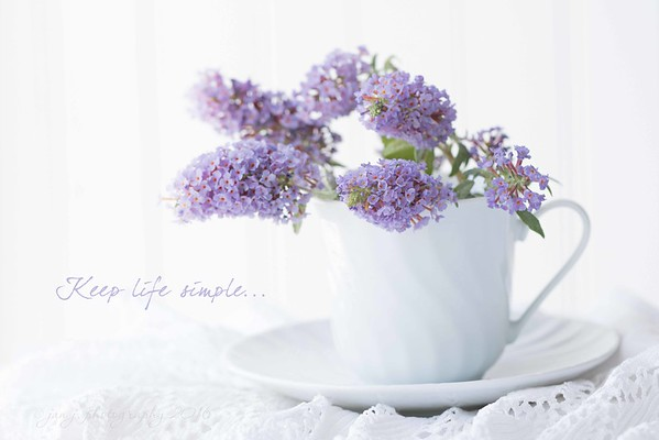 July 24 - Soft Dreamy Photography - More practice...  #SoftDreamyPhotography