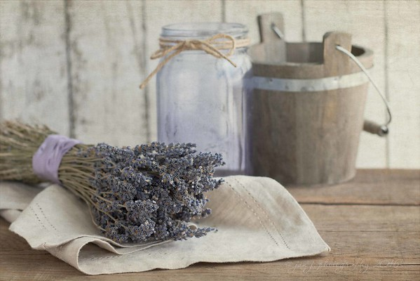 June 13 - It's a lavender kind of day...