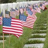 May 30 - Remembering...that freedom isn't free<br /> <br /> Fort Rosecrans National Cemetery, San Diego CA