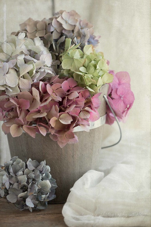 July 16 - Continuing with the Dried Hydrangea theme...