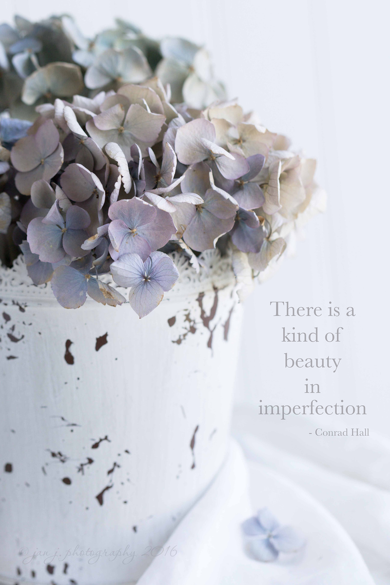 June 15 - Today's prompt...Imperfect  #CY365 - Imperfect #Soft Dreamy Photography