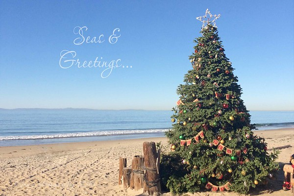 December 19 - Oh, the weather outside is frightful...<br /> <br /> The Beachcomber Cafe<br /> Newport Coast, CA