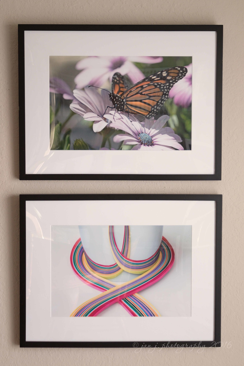 June 24 - I'm honored to have these two images accepted into the Orange County Fair Photography Exhibit.  I'll be dropping them off at the fairgrounds in the morning...