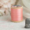 March 21 - Grandma's Thimble...<br /> <br /> #Macro Monday - Inheritance
