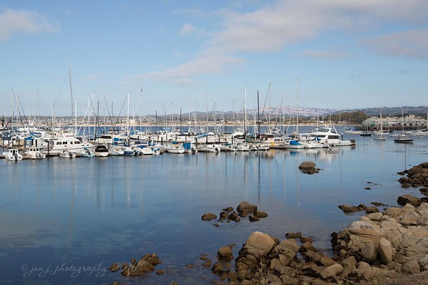 August 7 - Just a beautiful day...  Monterey Bay, CA