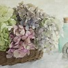 """June 30 - As my collection of dried hydrangea grows, my husband wonders why we have """"dead"""" flowers in the house..."""