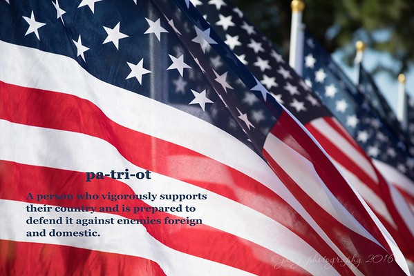November 11 - To all those who have served - Thank You...  Field of Valor Handy Park Orange, CA