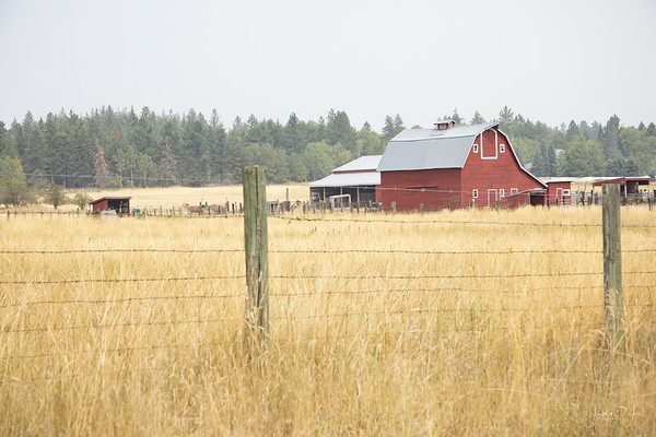 August 16 - Unable to escape the smokey skies on this trip, but a red barn is always pretty to me.  Hayden, ID