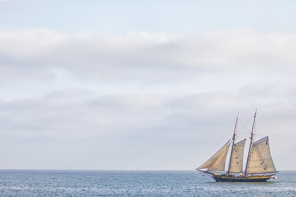 September 7 - Sailing into port...  #CY365 - Backlit/Evening Dana Point Tall Ships Festival 9/2018