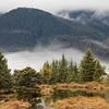 September 24 - Currently loving autumn in Juneau...<br /> <br /> #CY365 - Currently Loving<br /> Mendenhall Valley<br /> Juneau, AK