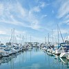 March 3 - It was a beautiful morning for a walk in the harbor...<br /> <br /> Dana Point, CA