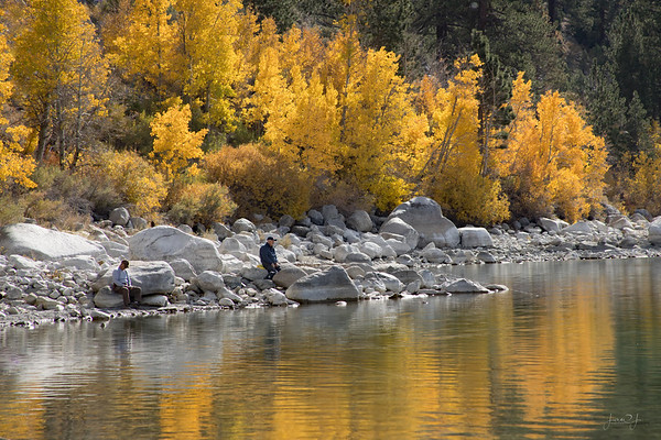 October 23 - When the fall colors don't come to you, you have to go out and find the fall colors...<br /> <br /> #CY365 - Playing Around<br /> June Lake, CA