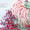 December 7 - ...with candy canes and silver lanes aglow<br /> <br /> #CY365 - Striped