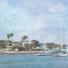 July 21 - A morning at Dana Point Harbor with the photo club...